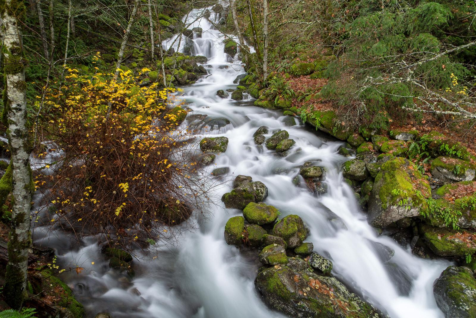 Fall colors below Hardy Falls
