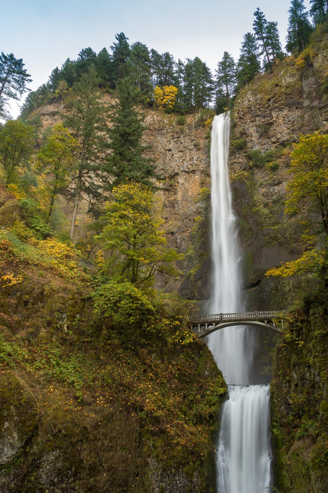 Multnomah Falls drops below Benson Bridge