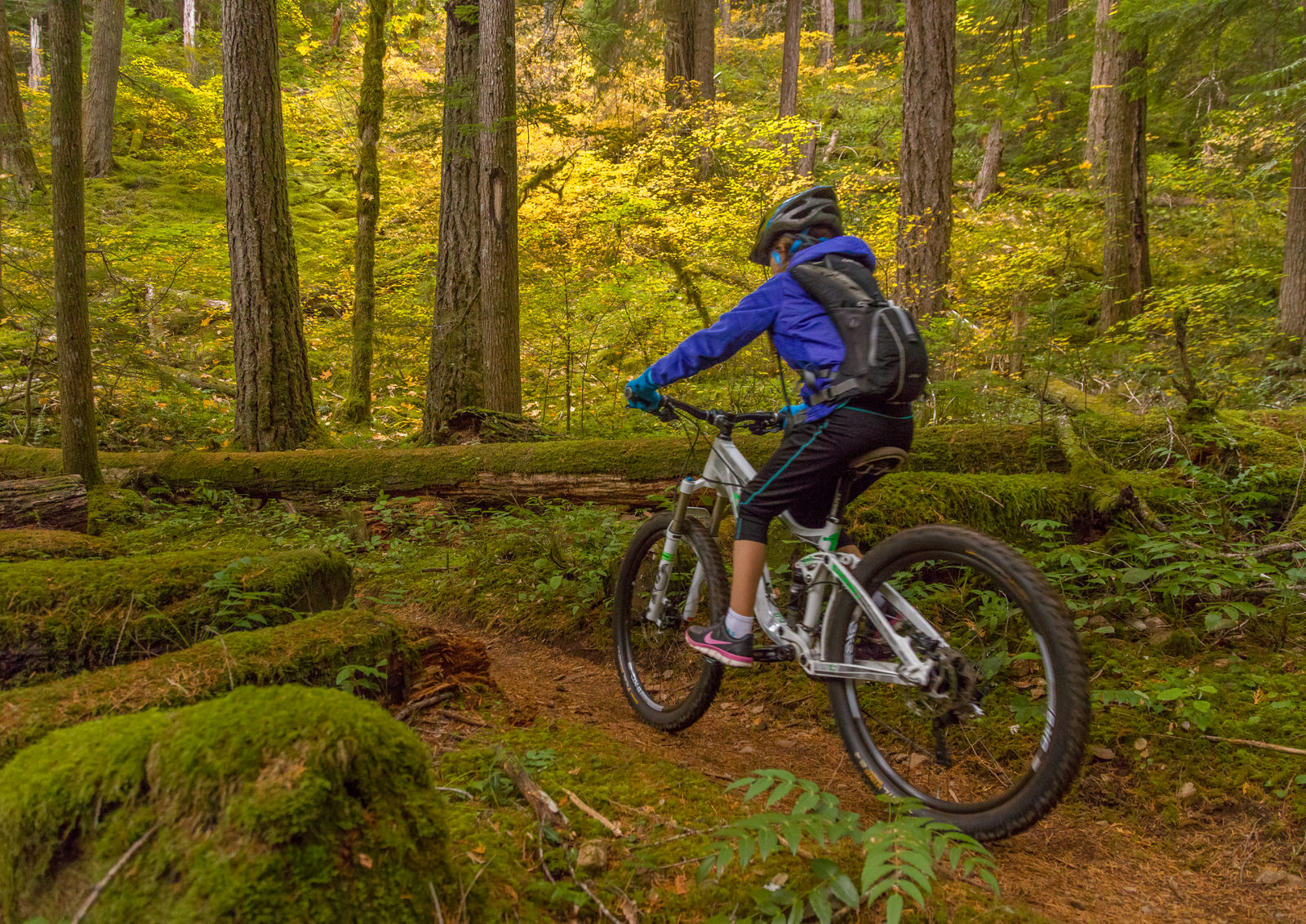 Mountain biking the McKenzie River Trail