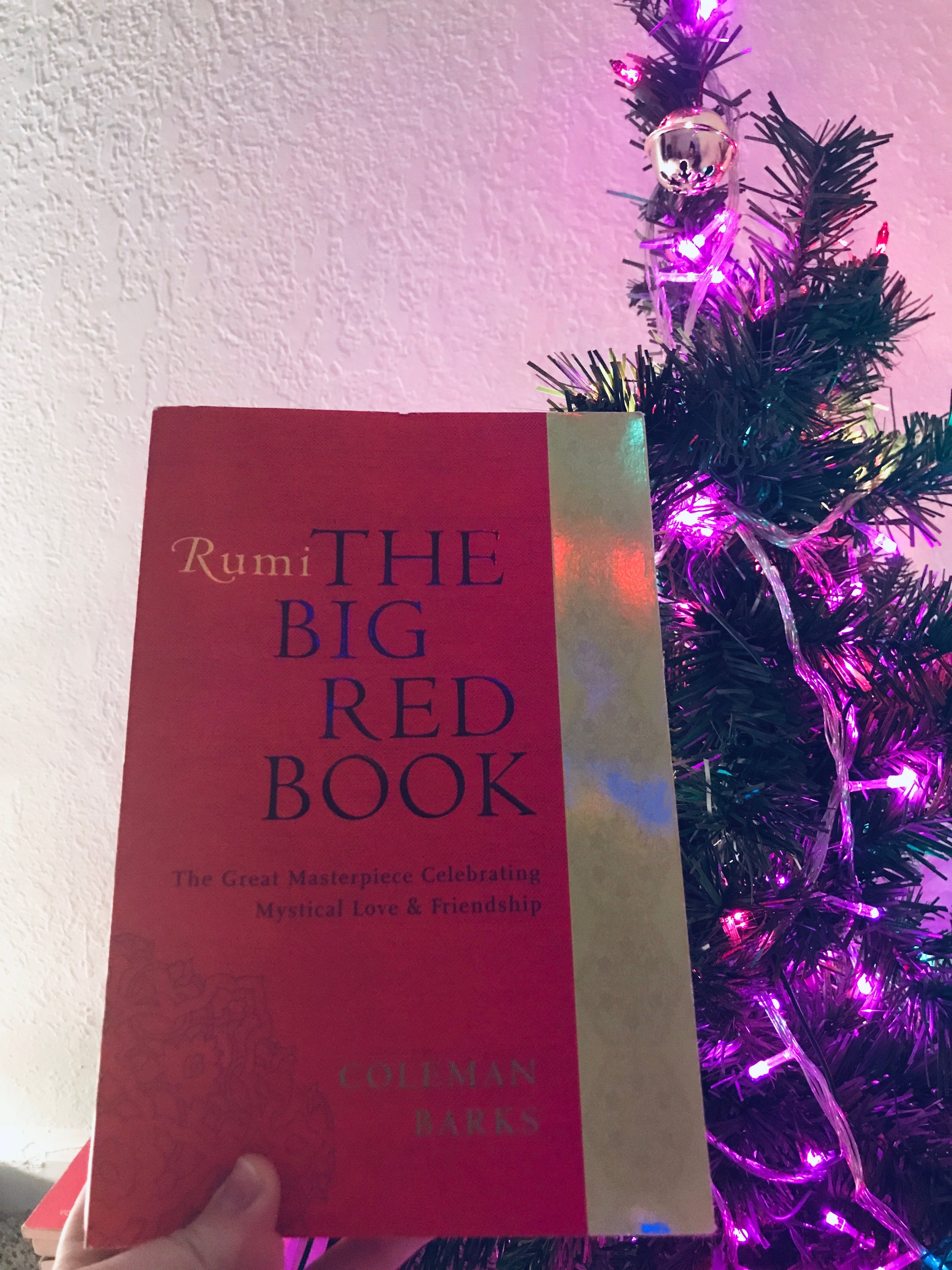 January Book! - The Big Red Book