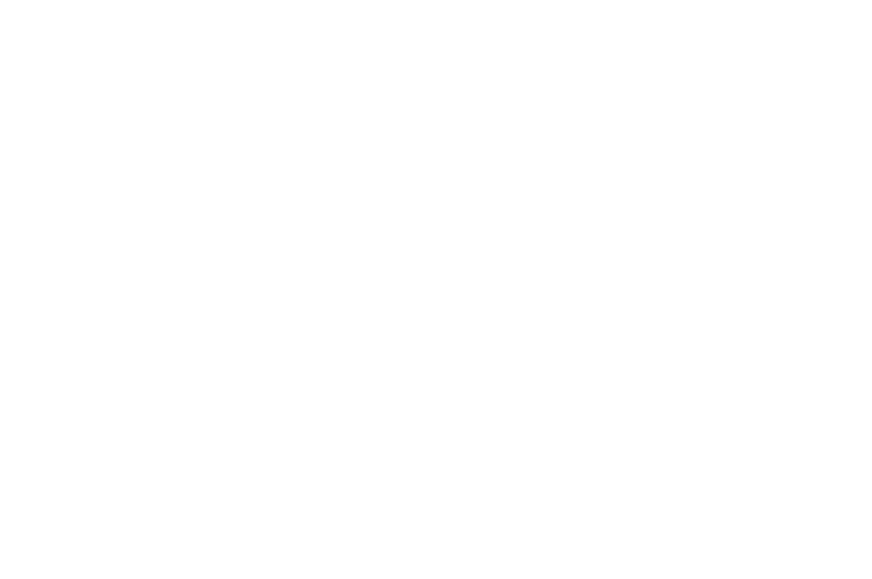 OFFICIAL SELECTION - Hoosierdance Film Festival - 2018.png