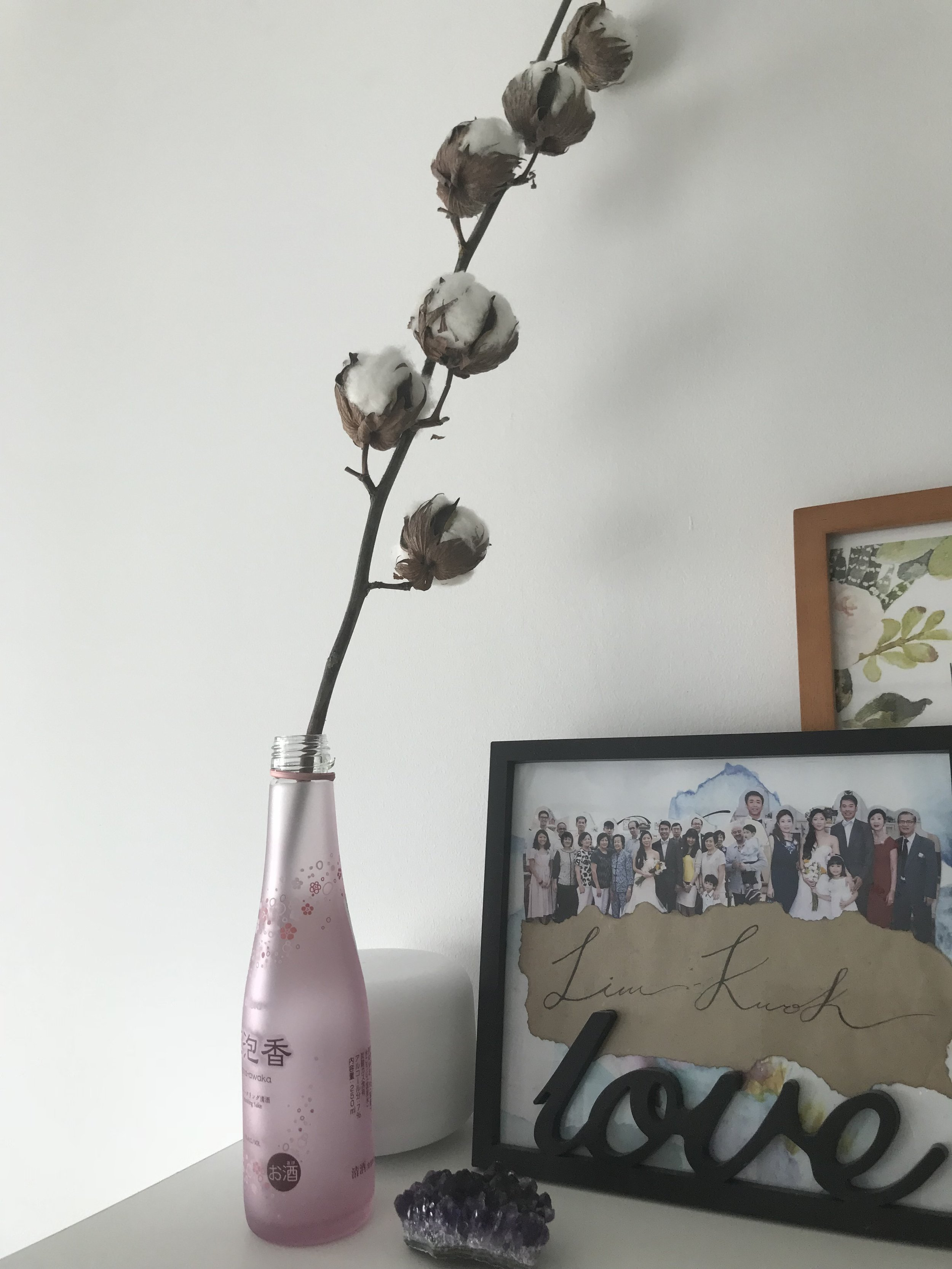 Sake Bottle - A pretty ornament for my pretty cotton plant.