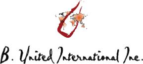 b-united-international.png