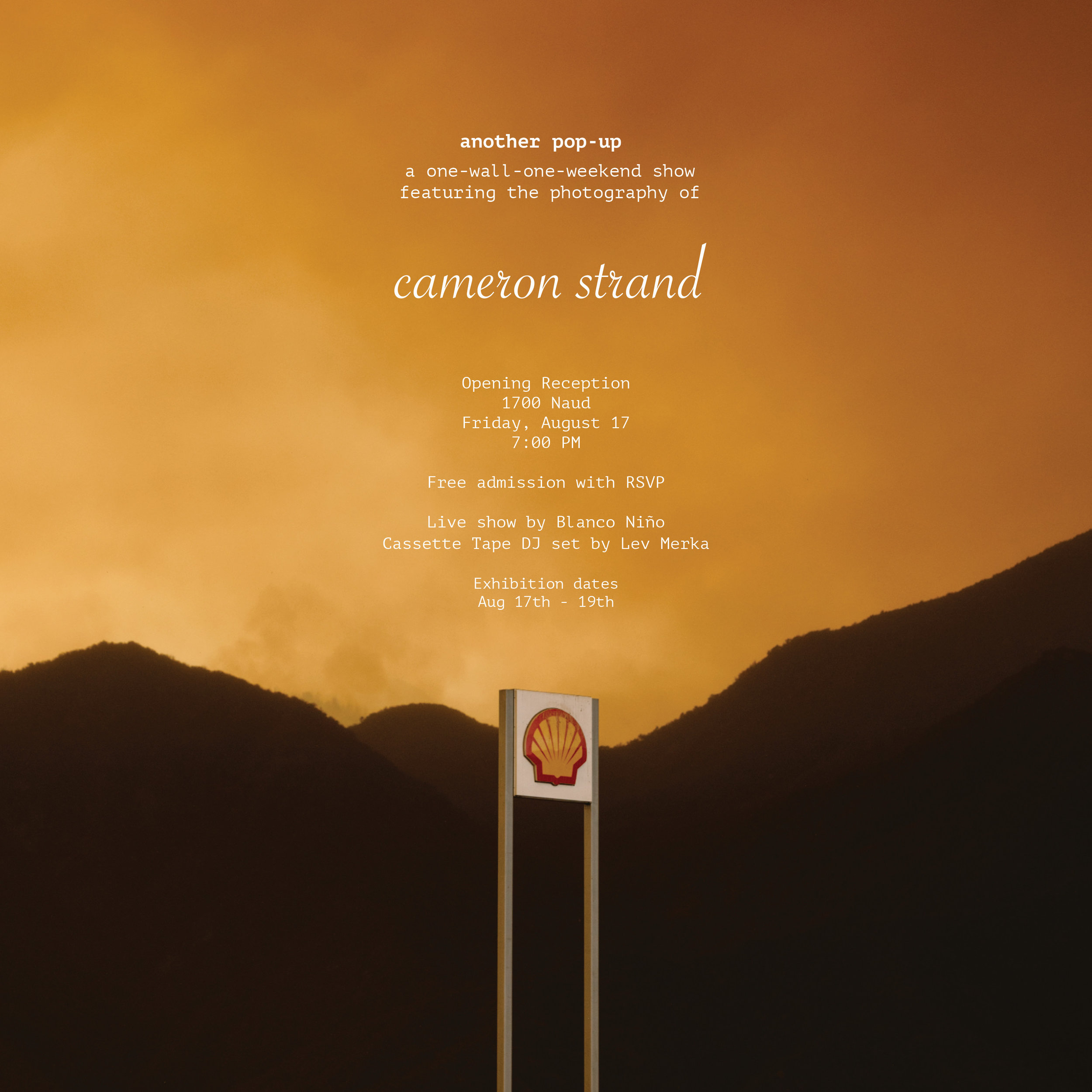 cameron_strand_flyer4.jpg