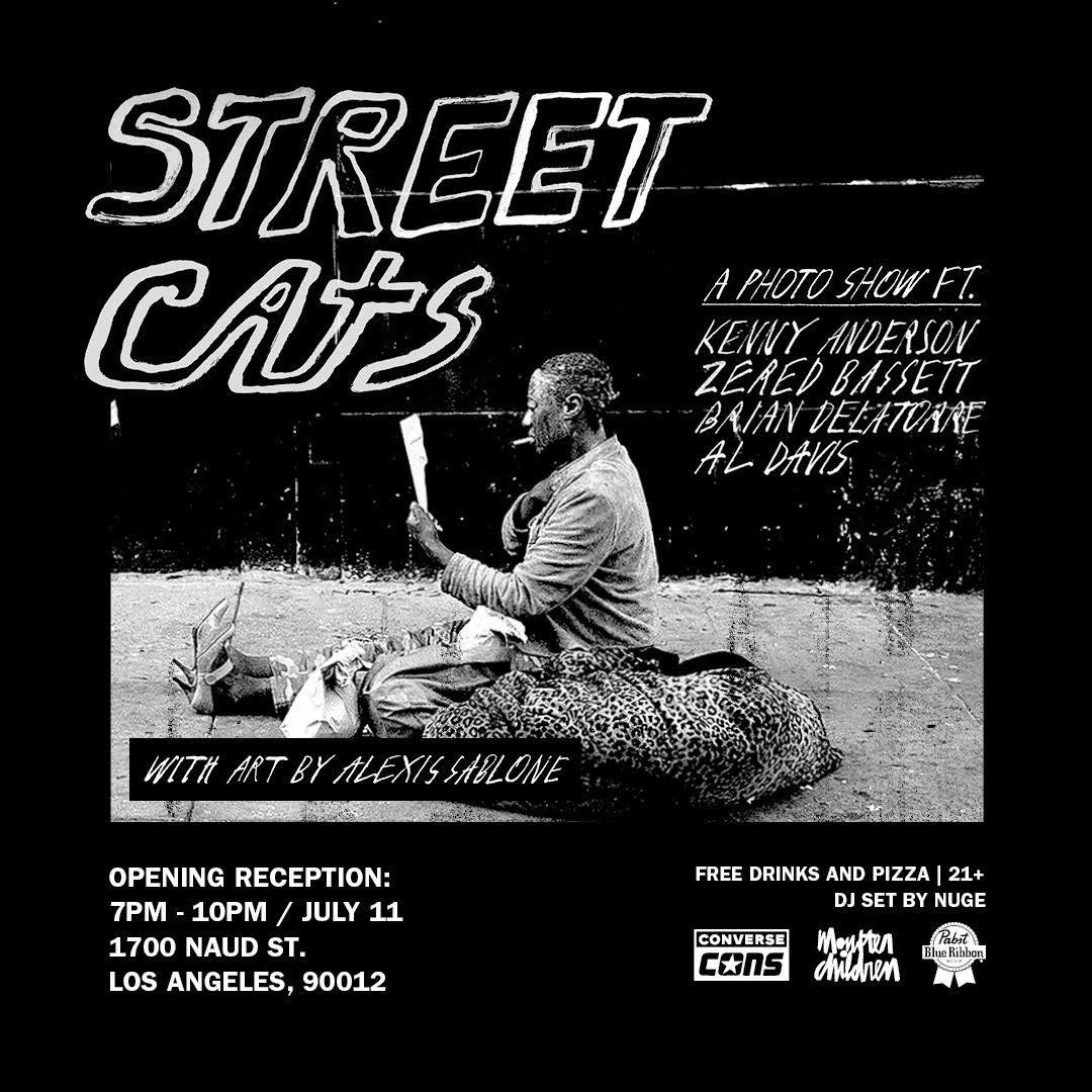Street cats.jpg