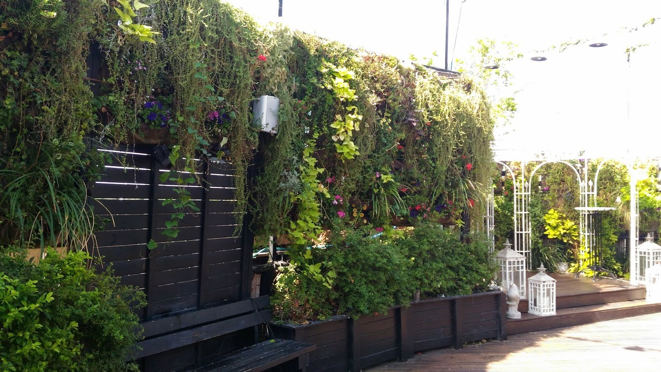 wall garden vivacity 2 5.jpg