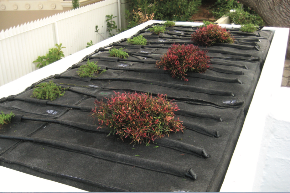 Vivacity roof top system.png