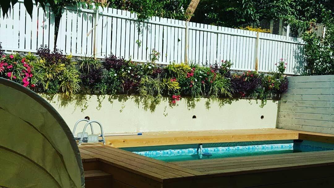 vivacity wall garden 2.jpg