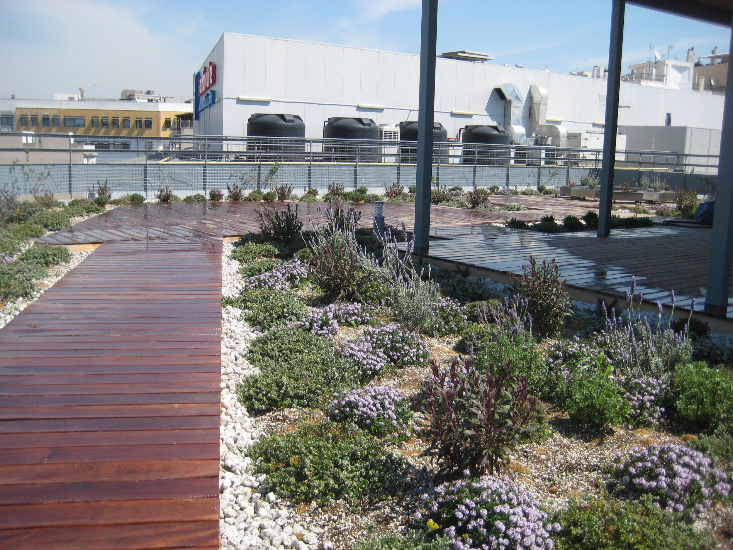 Vivacity green roof garden, decking and gravel