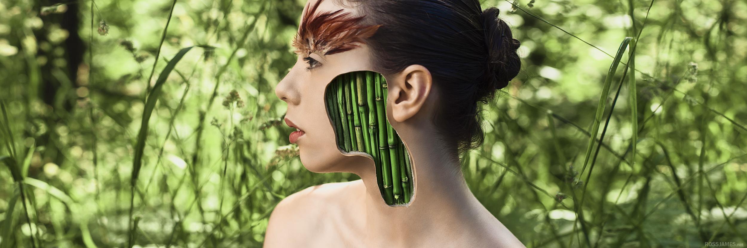 bamboo+3to1 2k.jpg