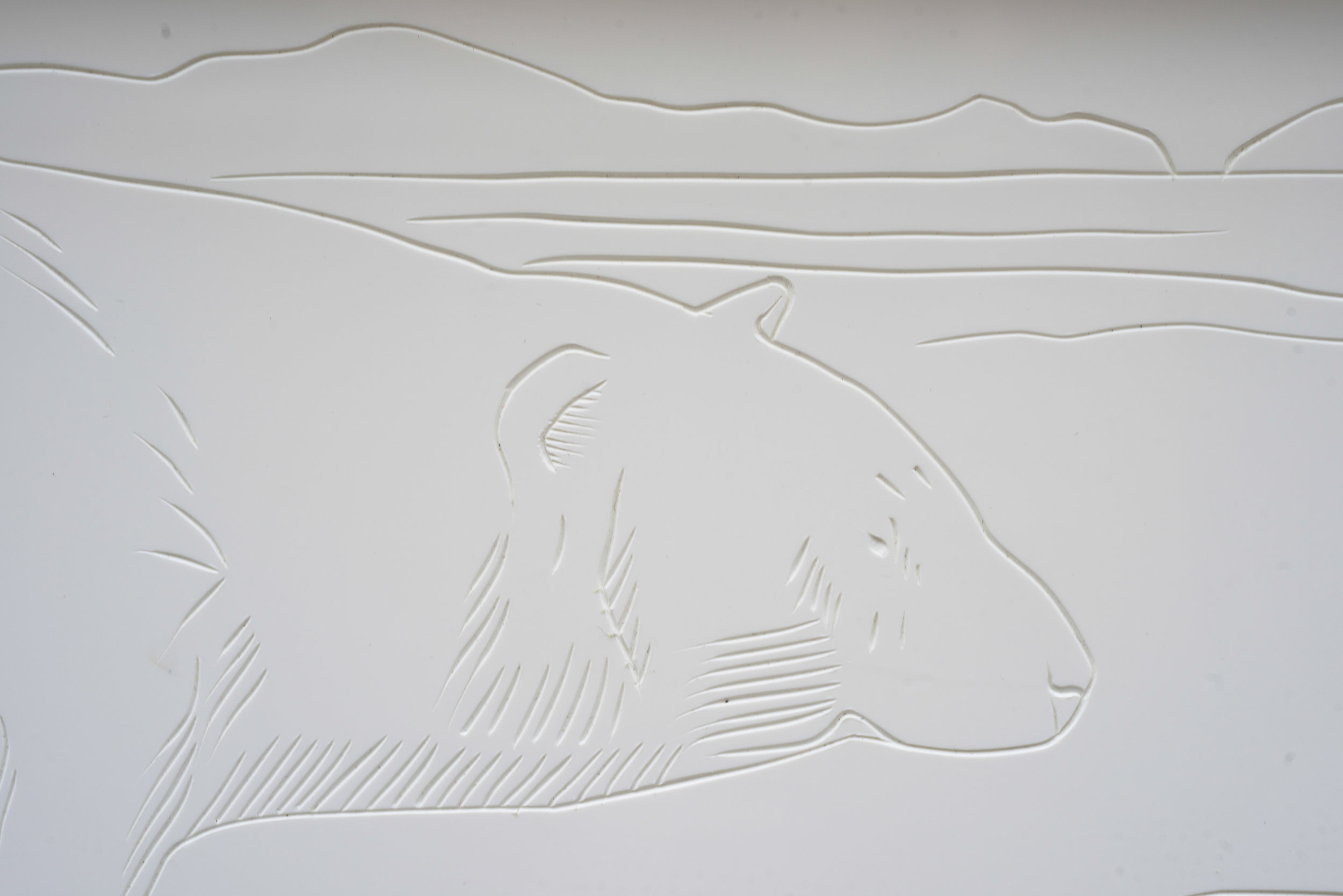 Polar Bears 2-4.jpg