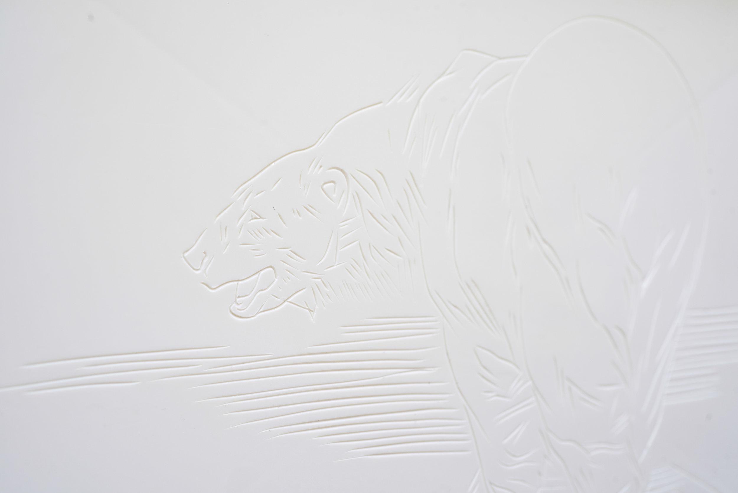 Polar Bears 5-6.jpg