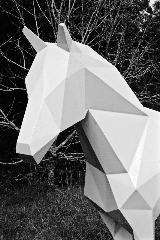 The White Horse (6).jpg