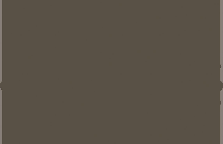 SANS SAUCI 2018.png