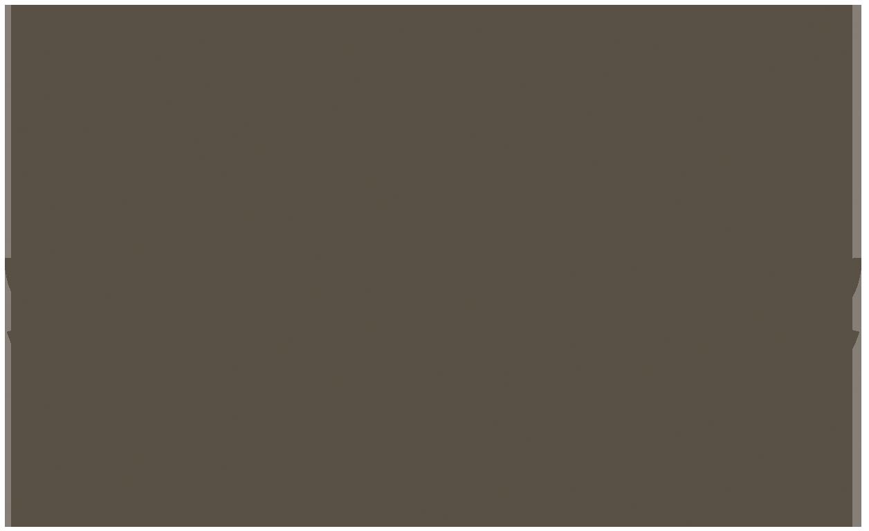 SFDFF 2018.png