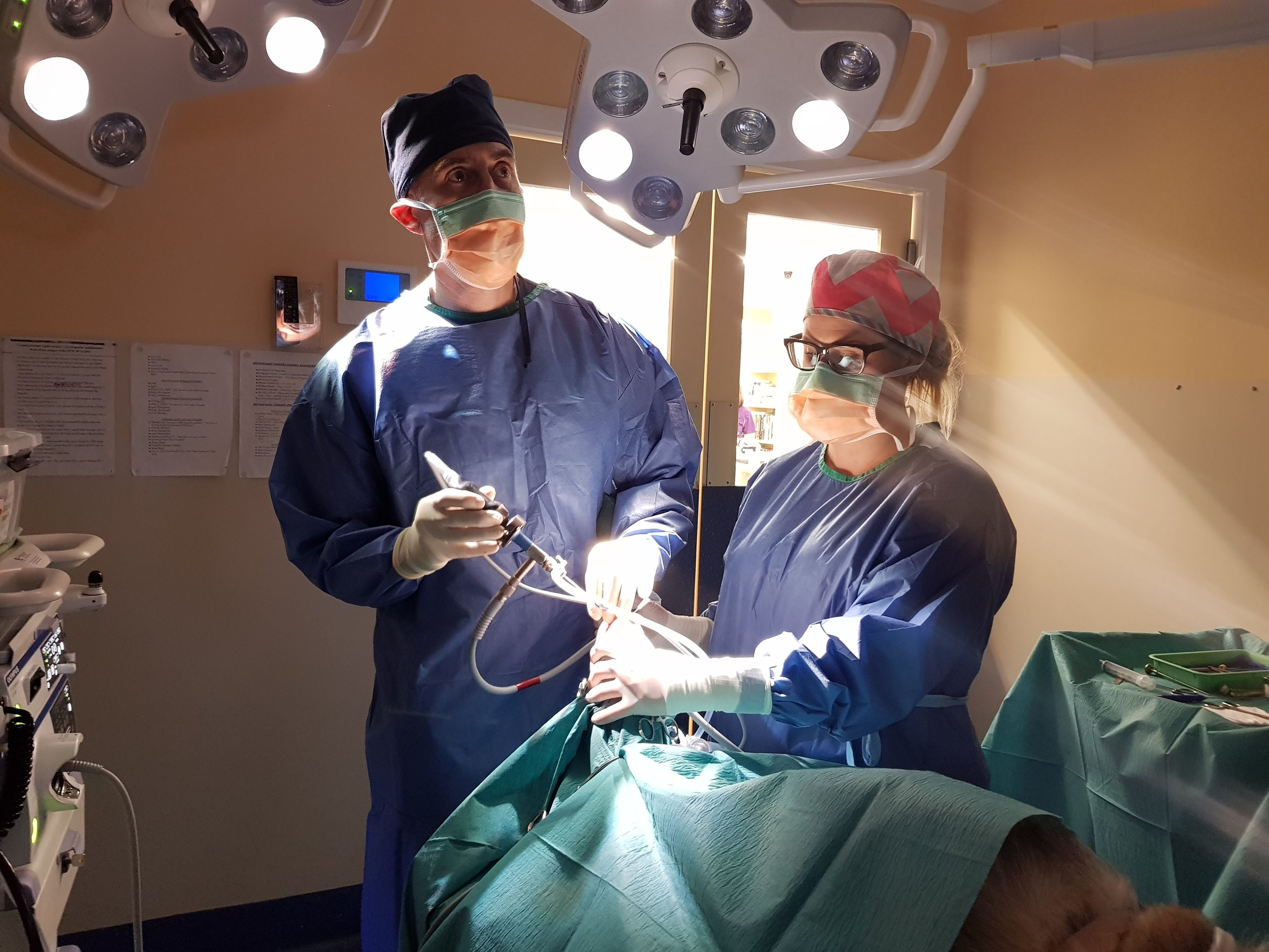 A bit about us - The goal of our service is to provide access to a registered Specialist in Small Animal Surgery operating in your local veterinary practice. Mobile Surgical Solutions provides this service to practices throughout metropolitan Melbourne, regional Victoria and Southern NSW.Learn more ➝