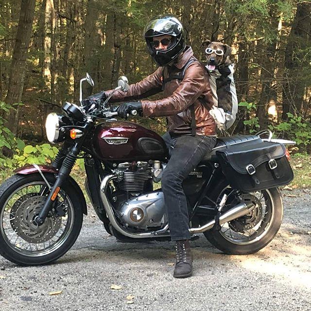 A man and his dog. Watson goes Moto-camping.