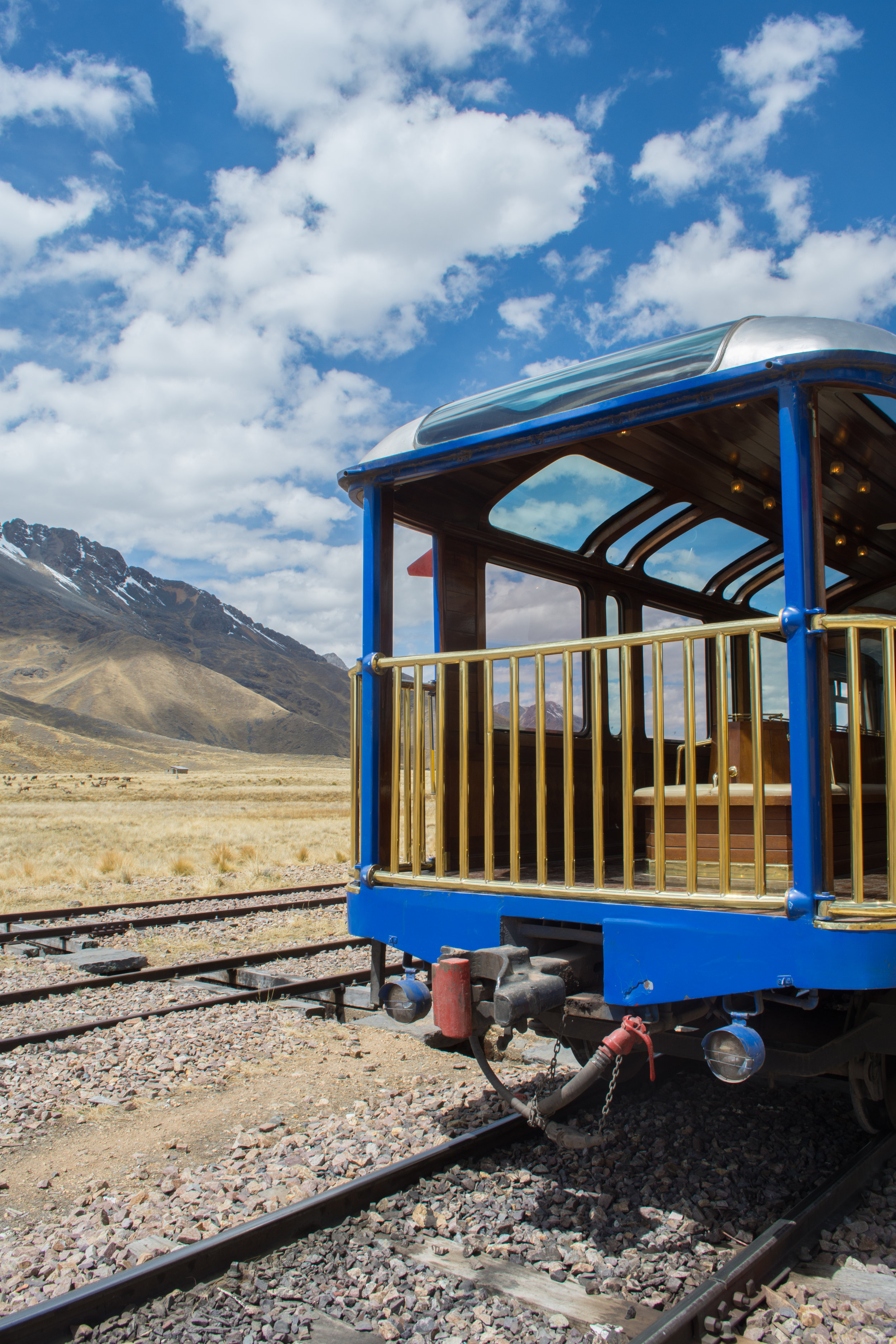 Observation Car on Lake Titicaca Train