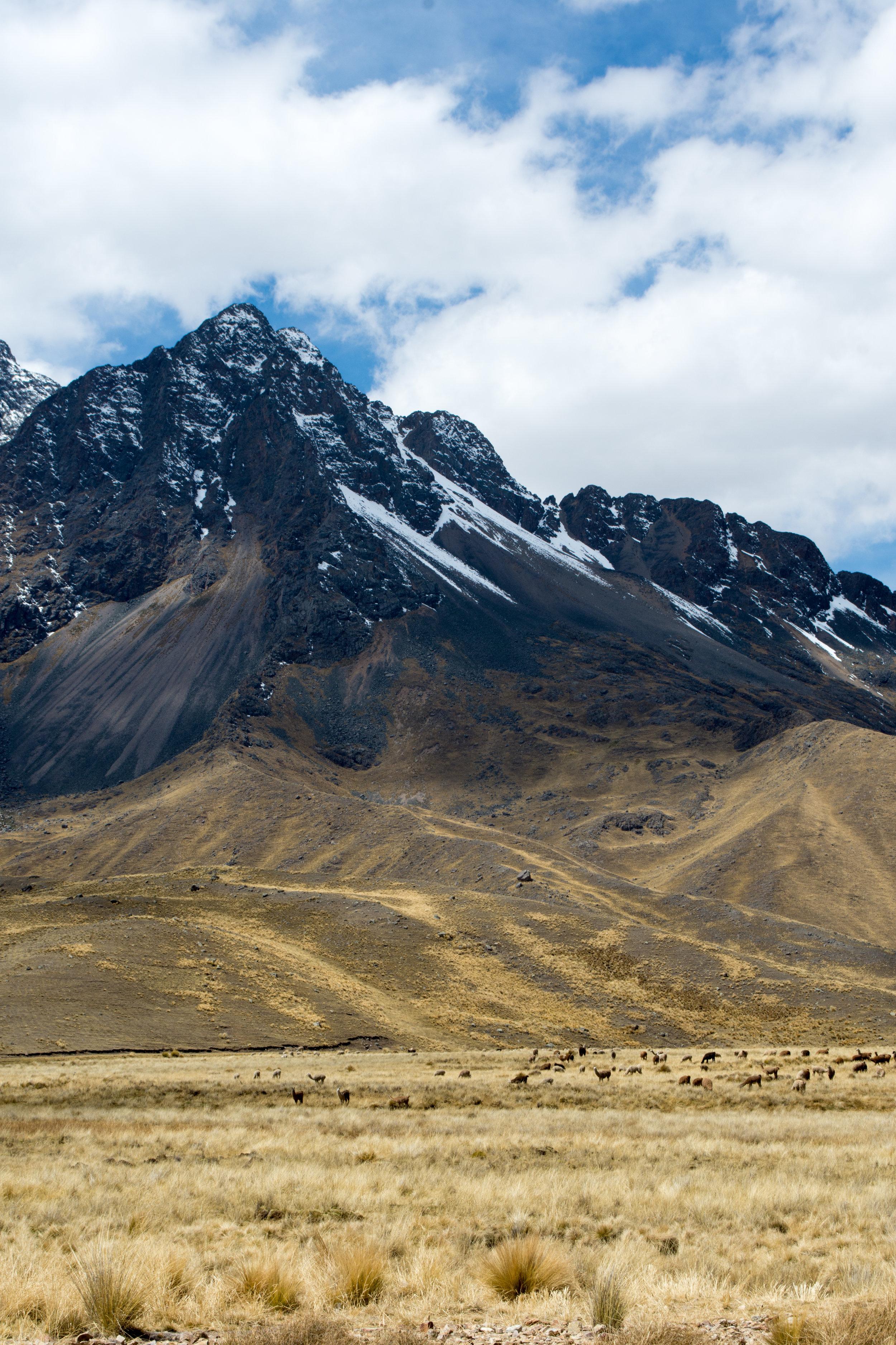 La Raya Pass in Andean Mountains on Luxury Perurail Lake Titicaca Train