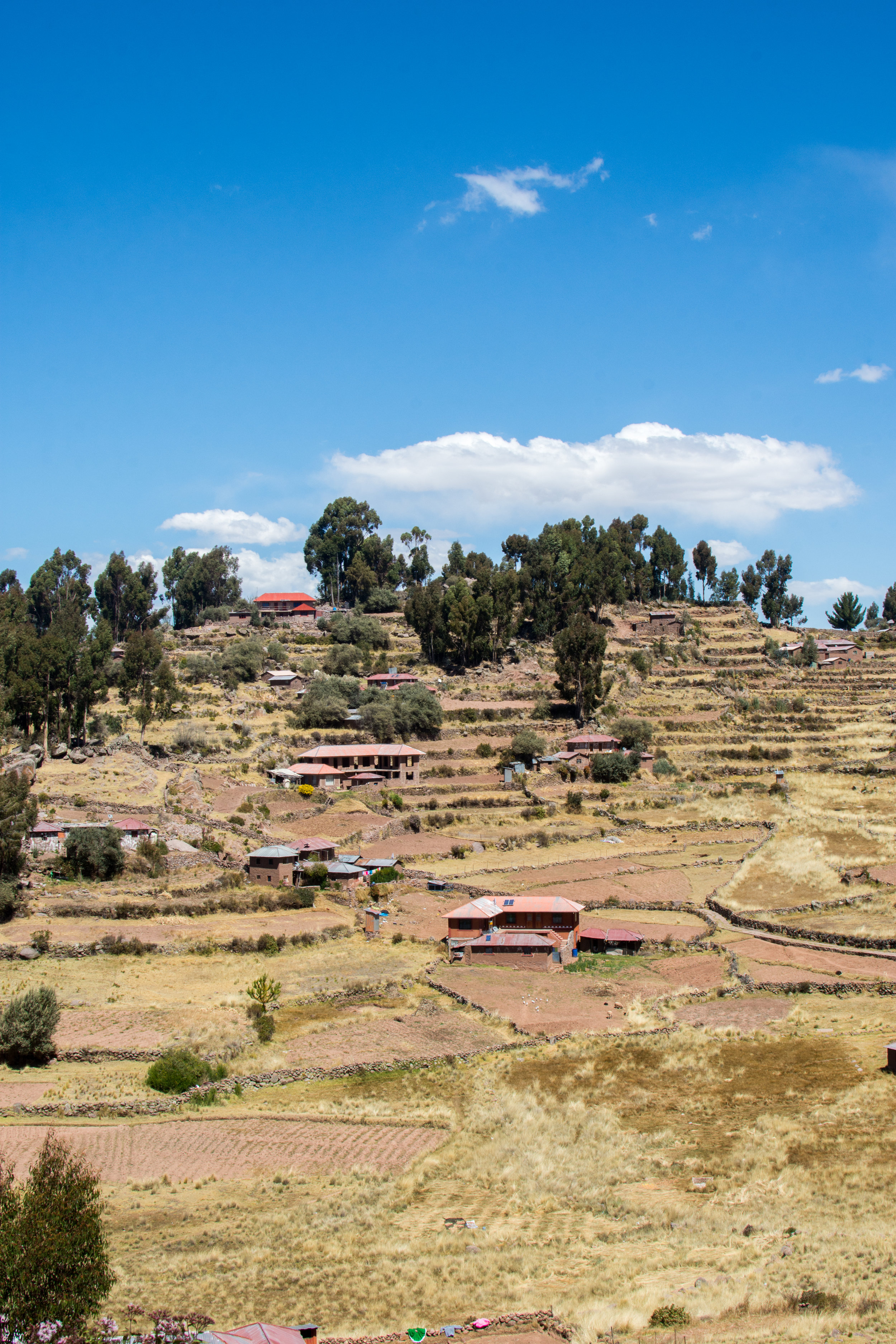 Terraces on Taquile Island
