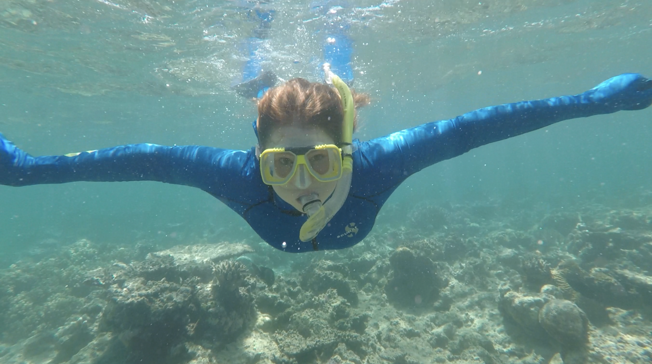 Snorkeling at the Great Barrier Reef – Tropical North Queensland, Australia