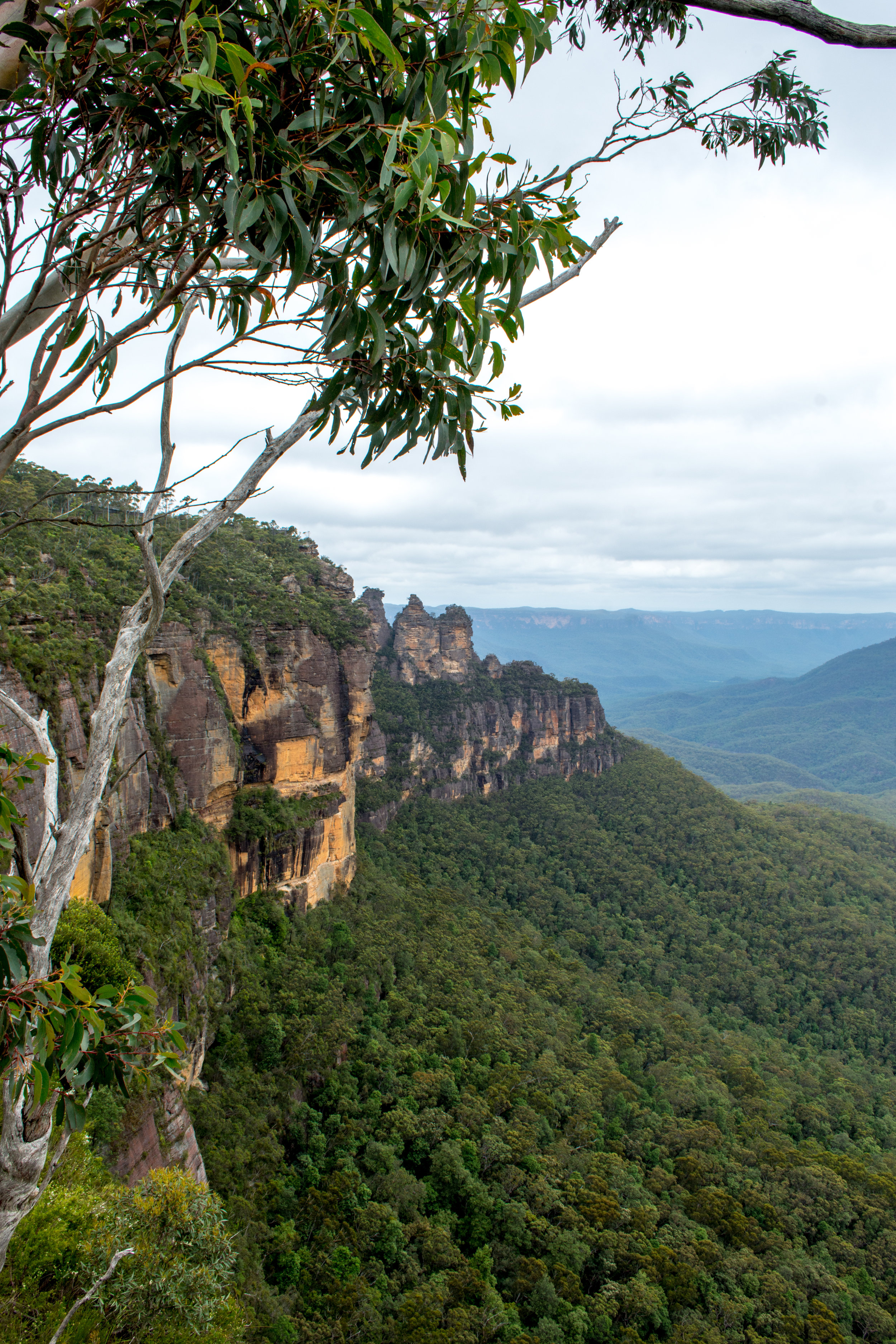 Three Sisters from the Prince Henry Cliff Walk