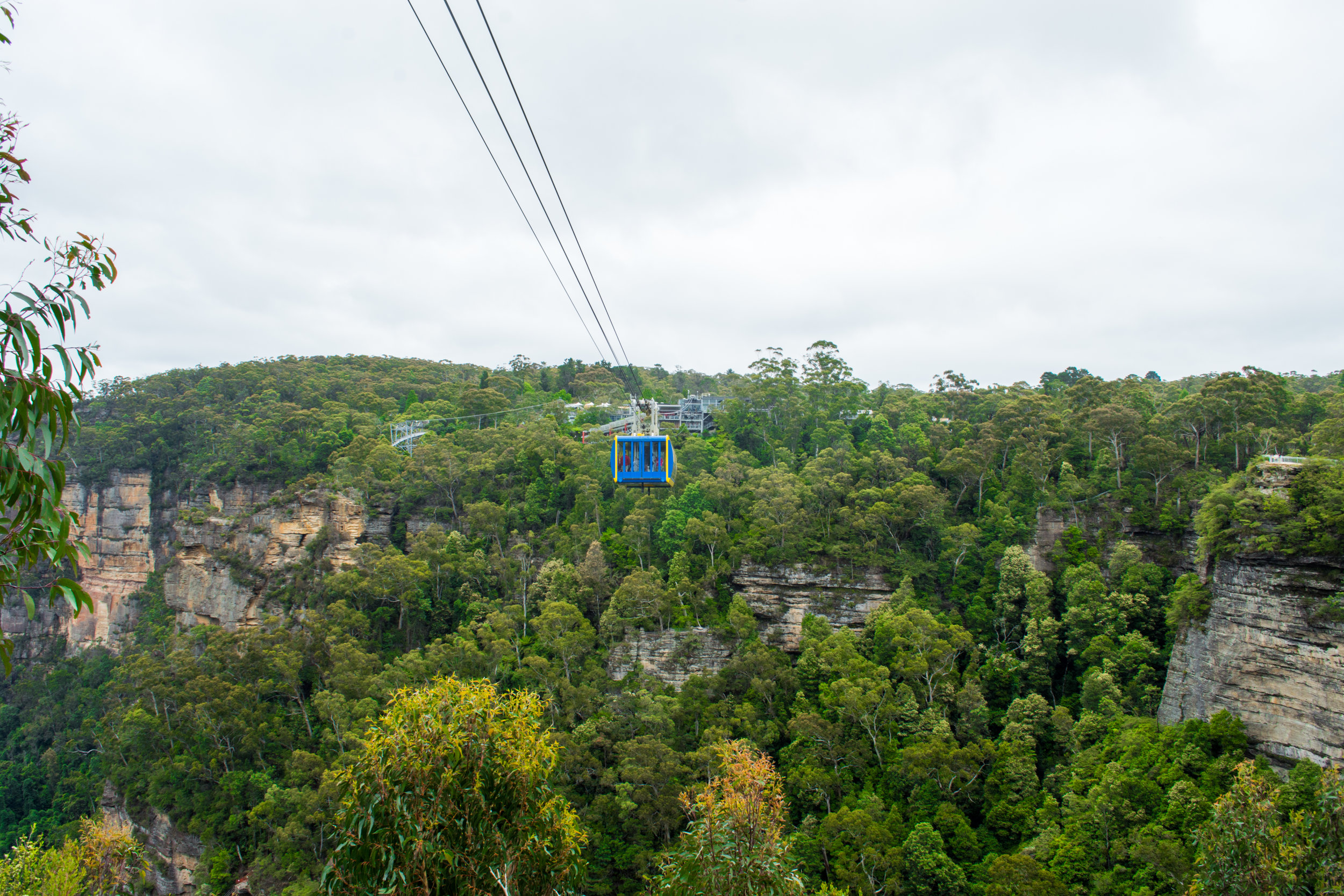 The Scenic Skyway at Scenic World