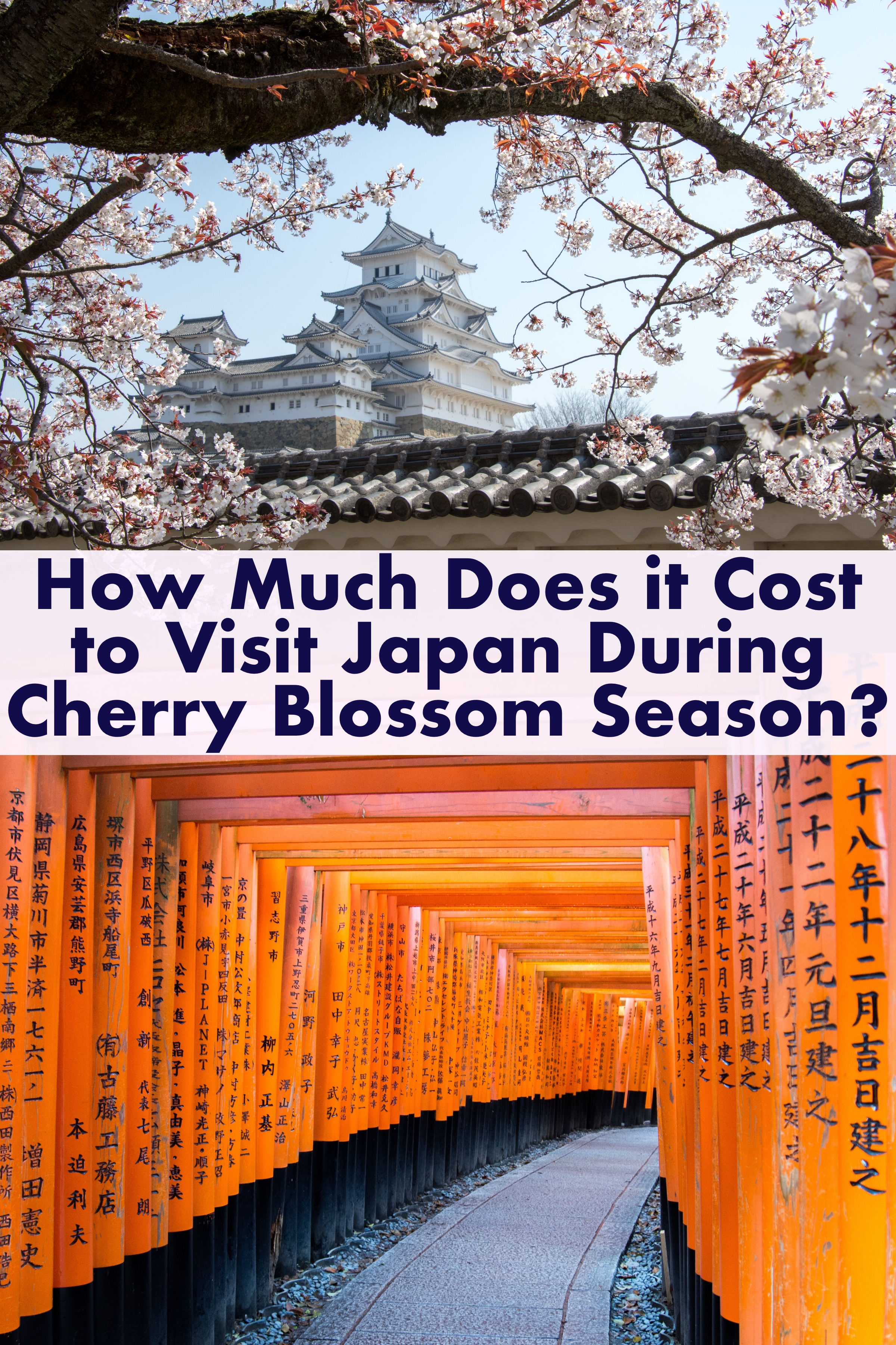 How much does it cost to Travel to Japan?  Here is a detailed account of everything we spent on our 2 week trip around Japan during Cherry Blossom Season #Japan #cherryblossoms #budget