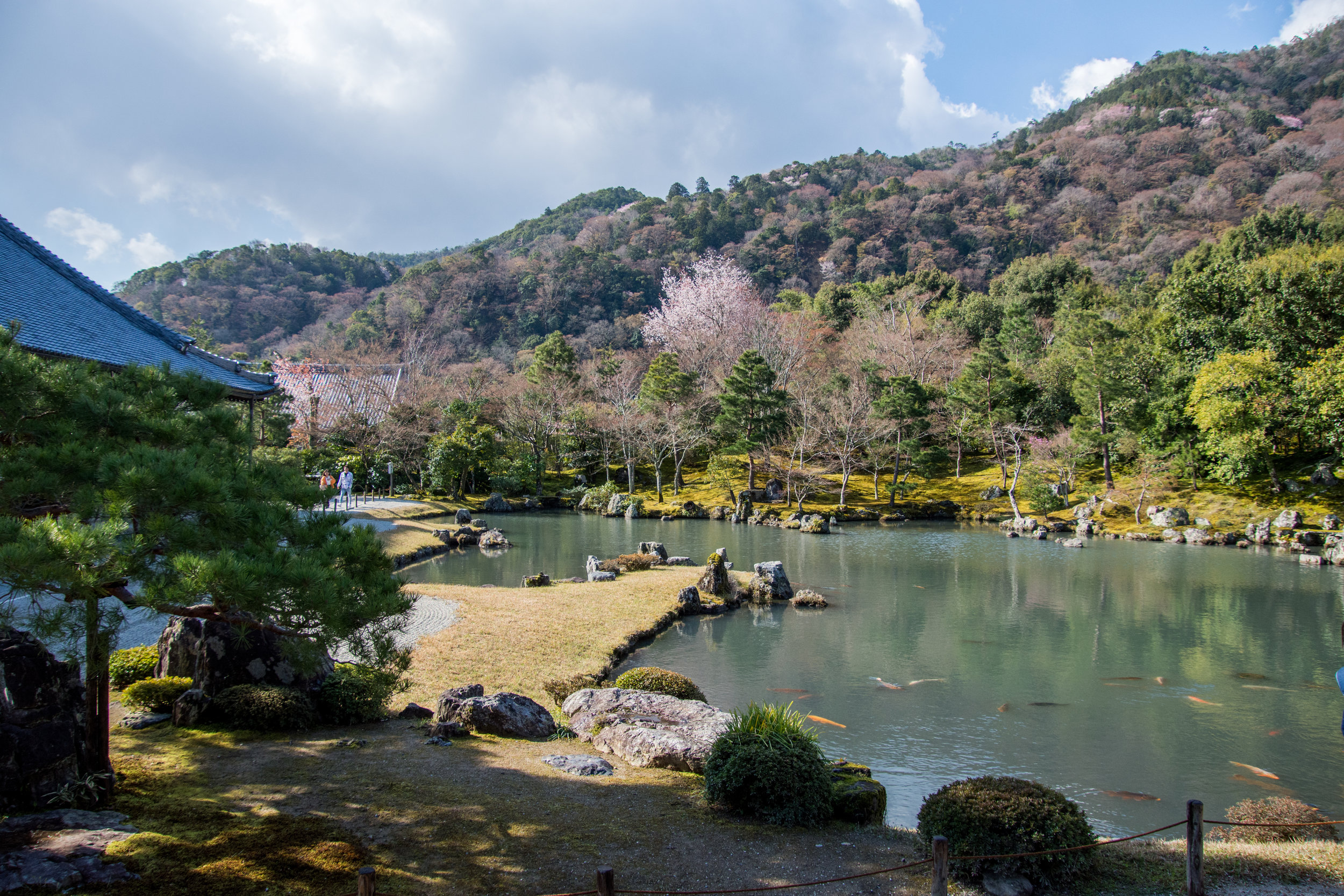 Tenryu-ji Temple in Arashiyama – Kyoto, Japan