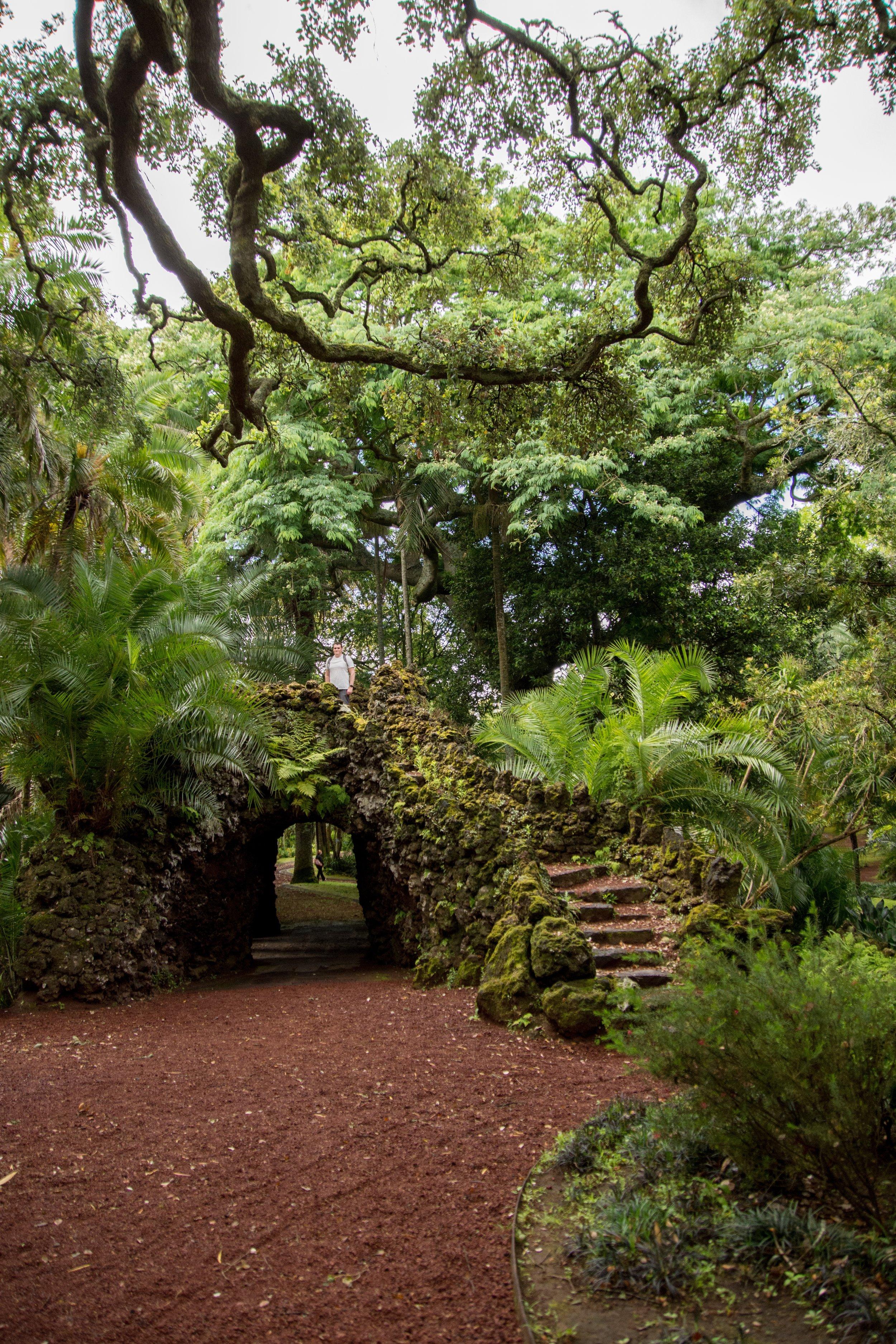 António Borges Garden – São Miguel island