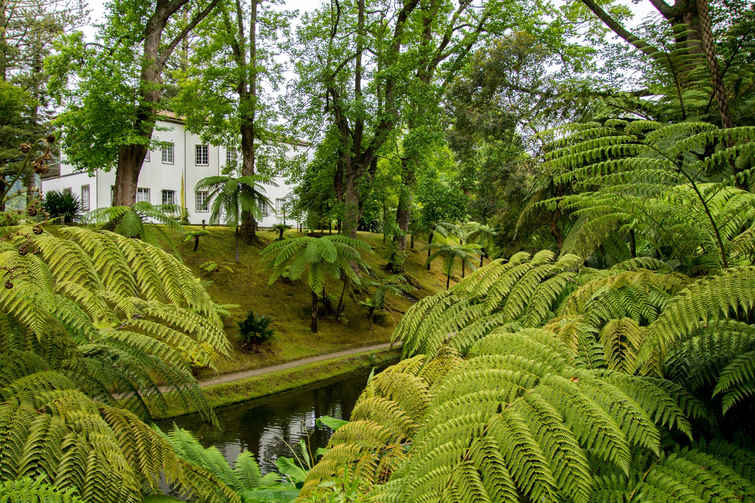 Parque Terra Nostra – Sao Miguel Island