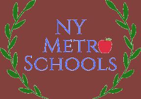 NY-metro-schools-logo-no-background.png