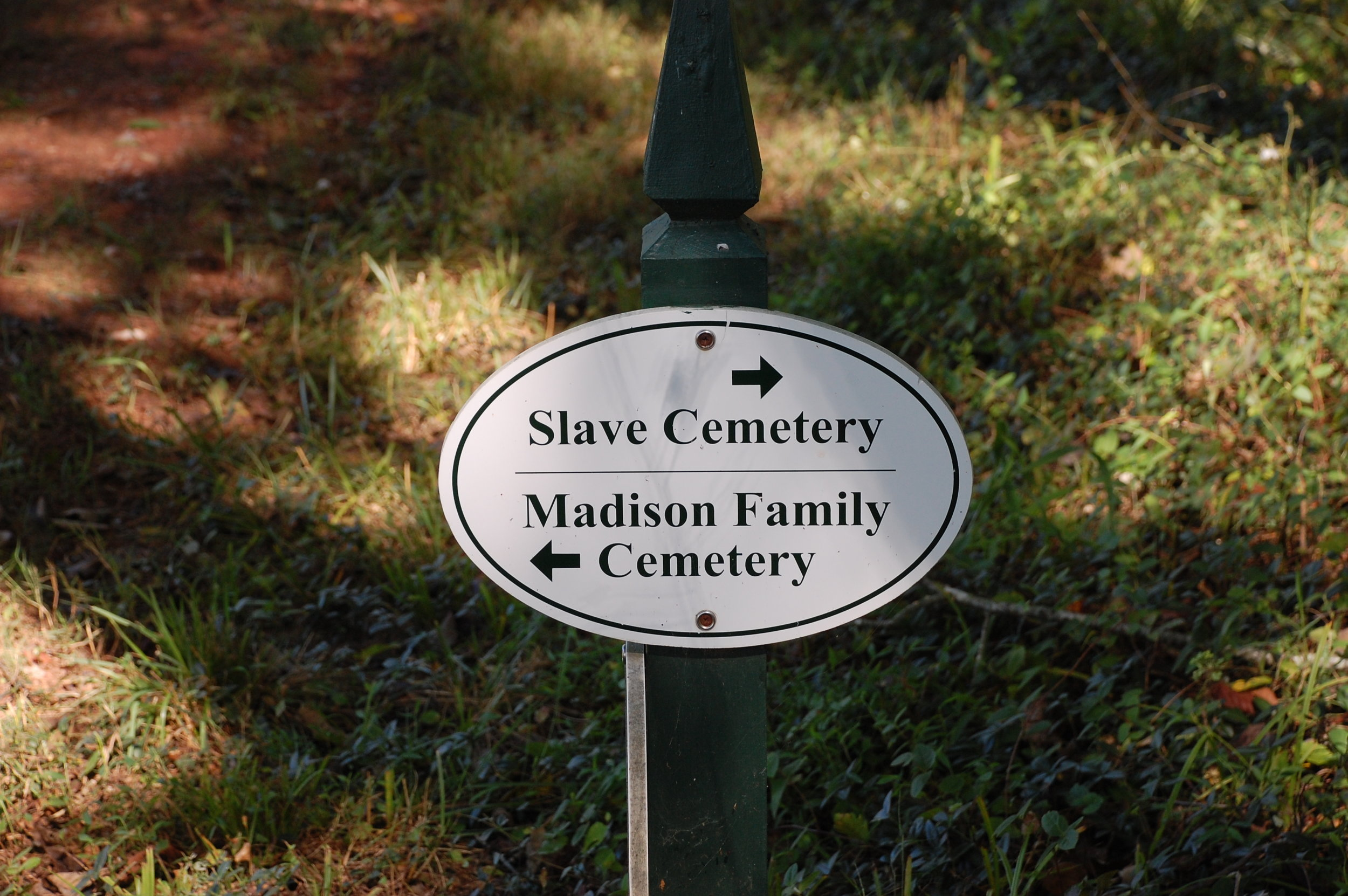 Slave Cemetery, Montpelier. Photo by Renée Ater, August 2019.