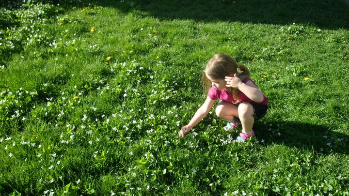 Raegan Picking flowers at Darcy's Summer 2010