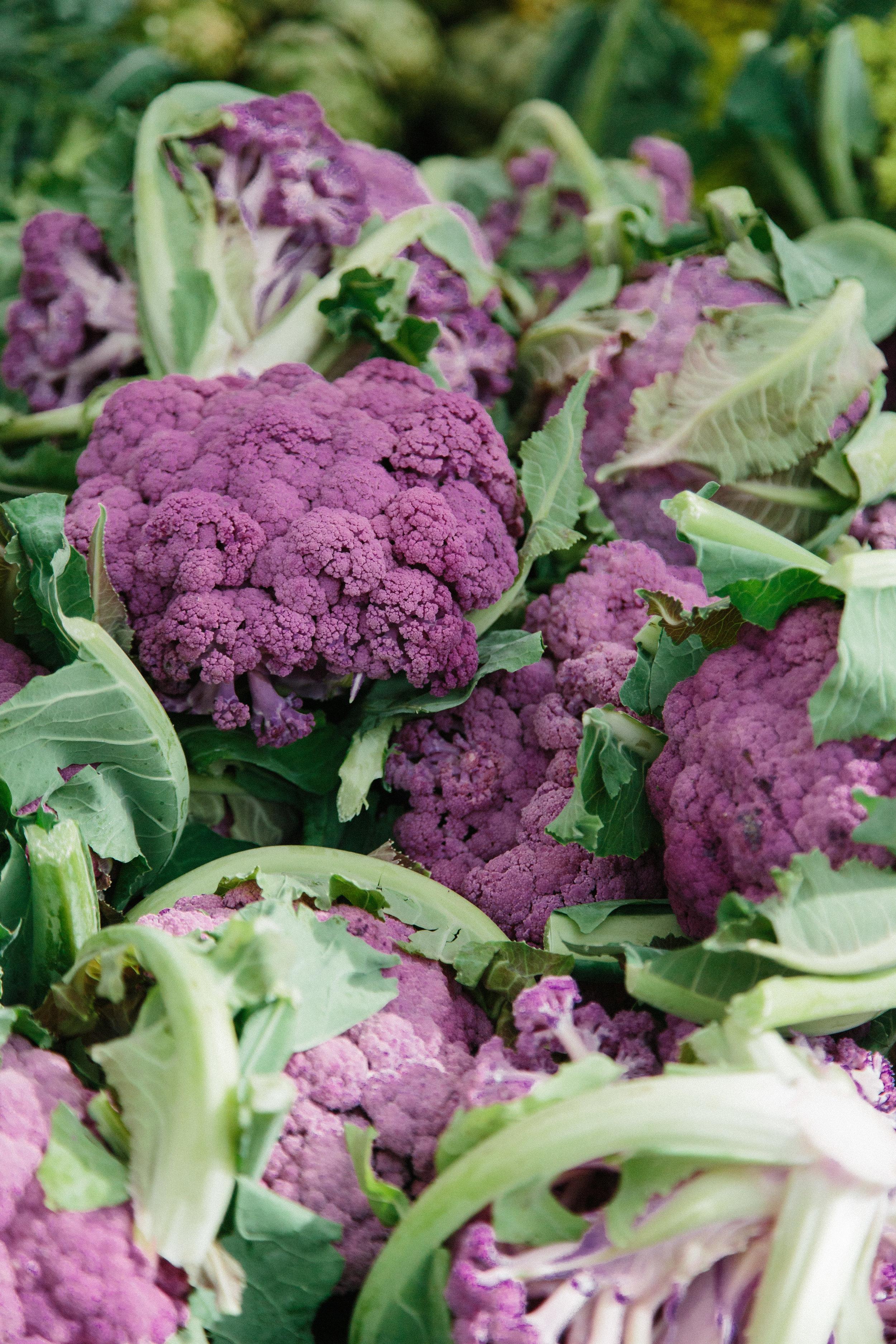 Neeyaz_Farmers Market_032019-104.JPG
