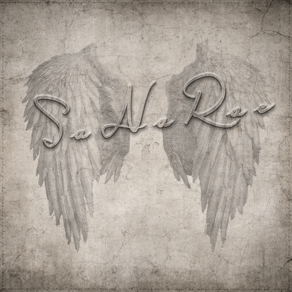 SaNaRae-Logo2016.png
