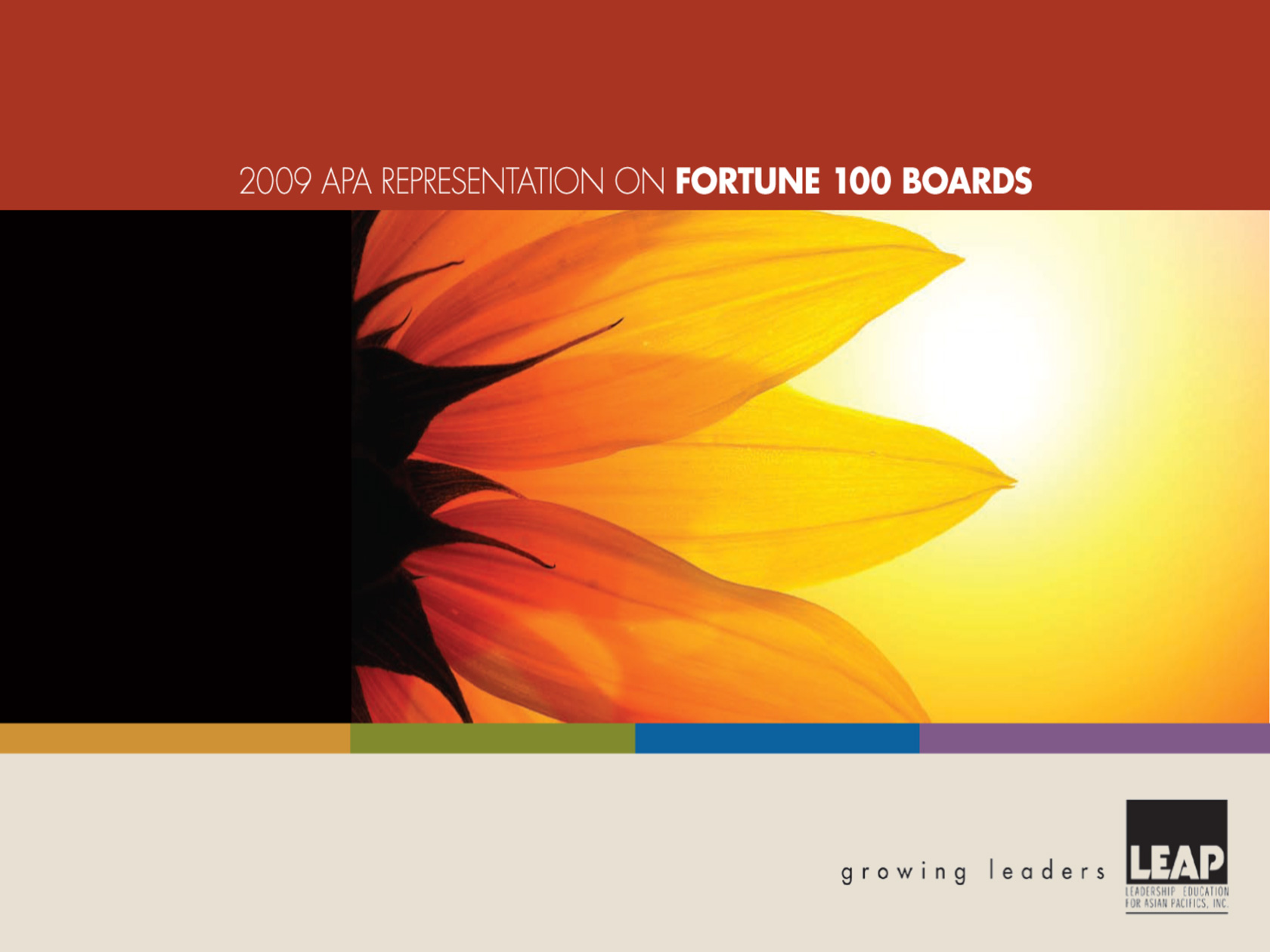 FINAL-LEAP-2009-APA-Representation-on-Fortune-100-Boards-Cover.jpg