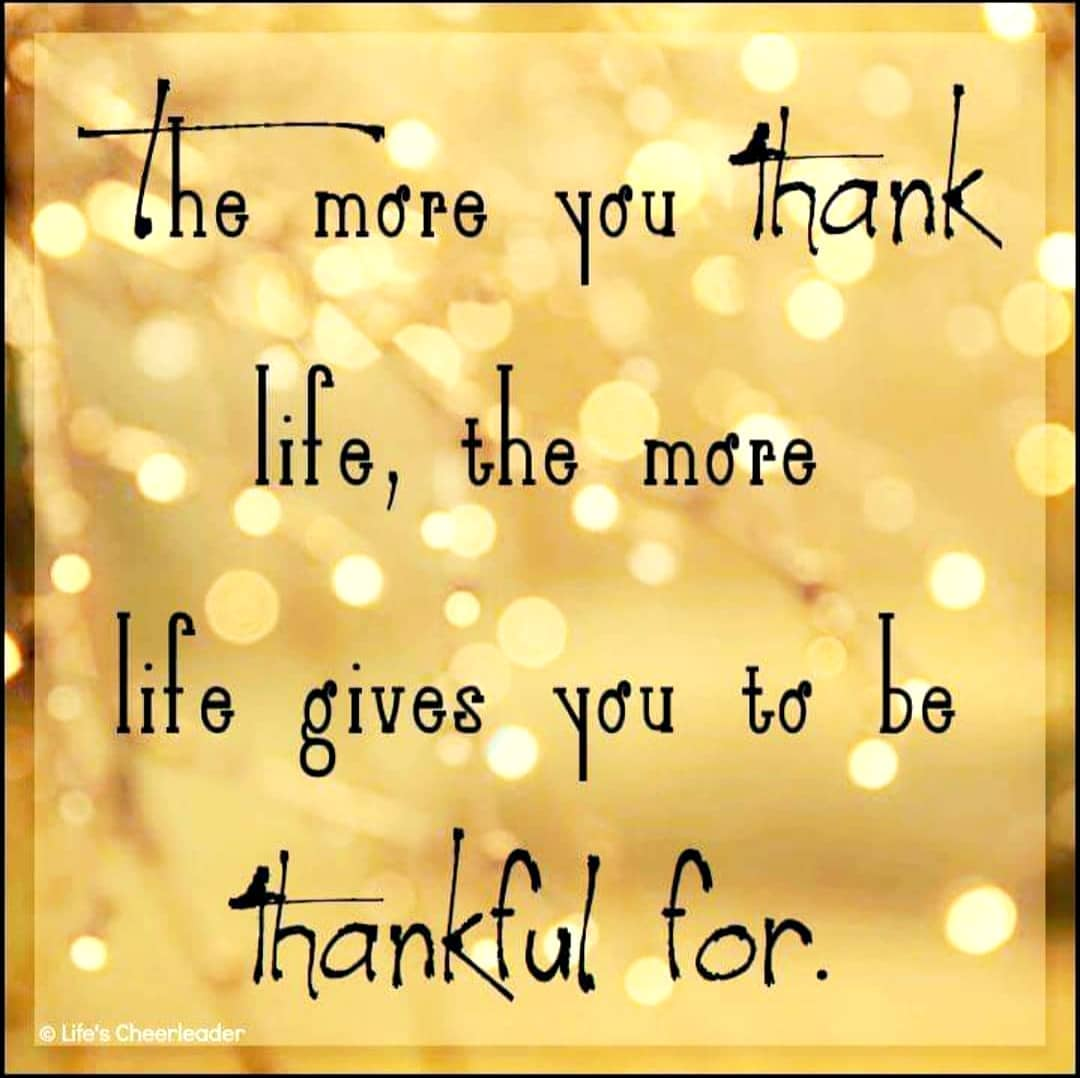 The more you thank life.jpg