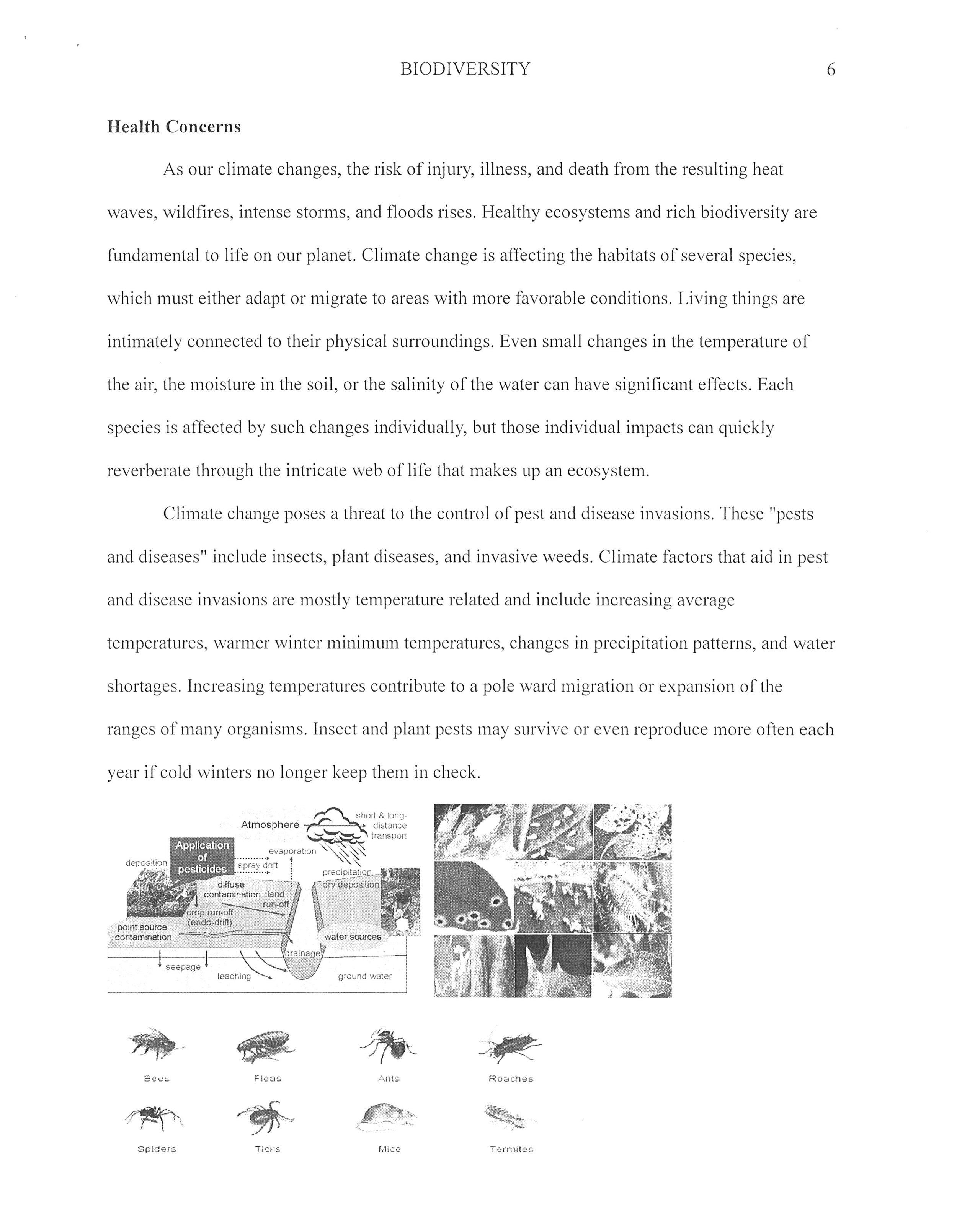 9. Scanned from a Xerox Multifunction Printer006.jpg