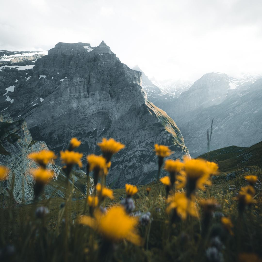 Alina_Kondrat_Travel_Landscape_Alps-7.jpg