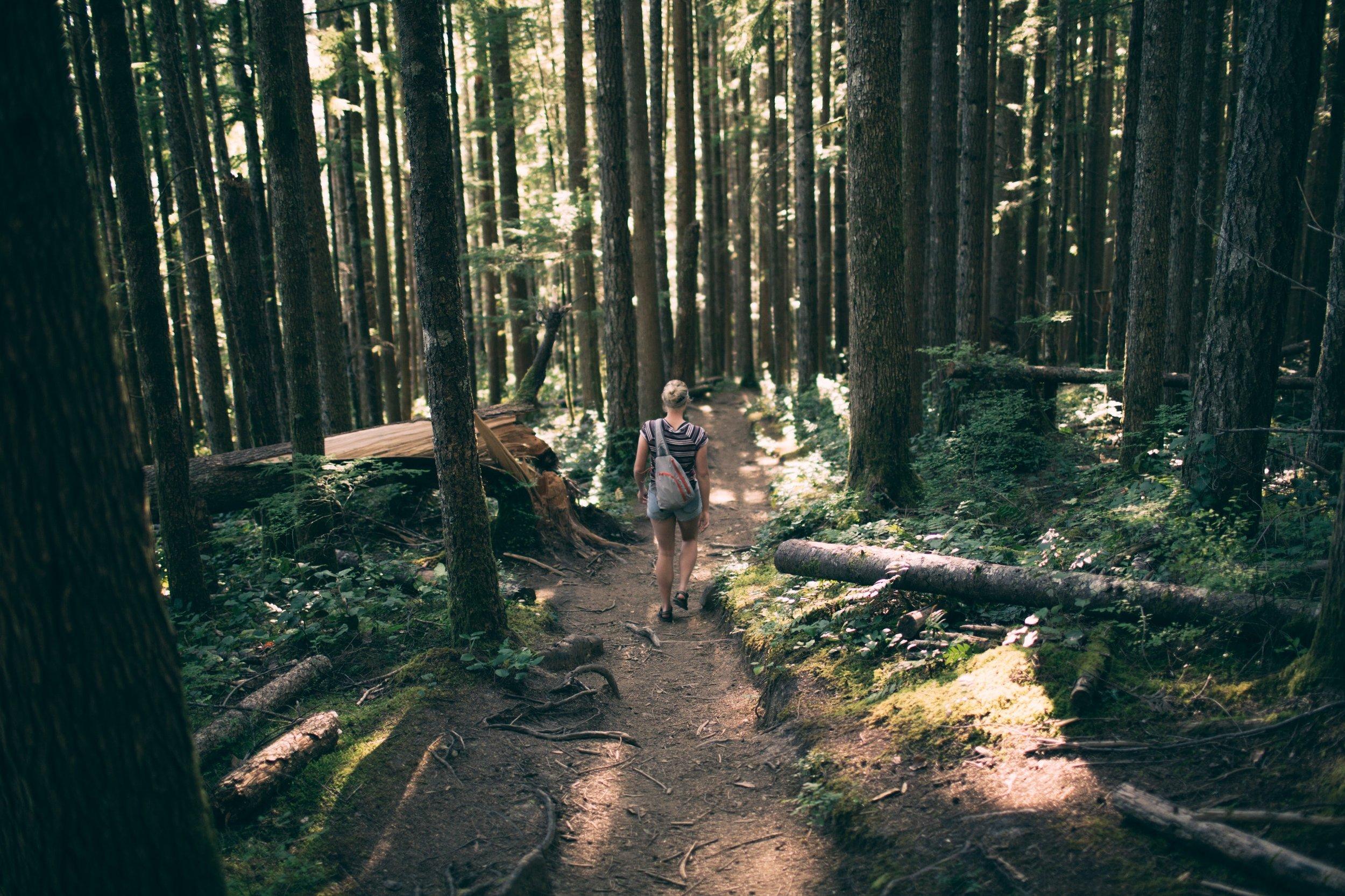 PortHope_Trail.jpg