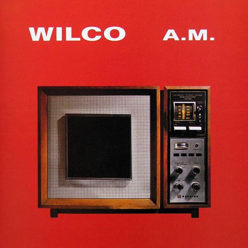 Wilco am Wilde Beest Kingston.jpg