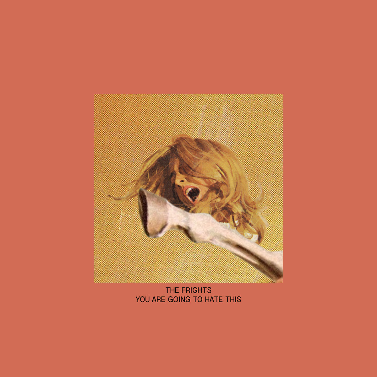 THE FRIGHTS   You Are Going To Hate This, 2016, Zac Carper, 33:00