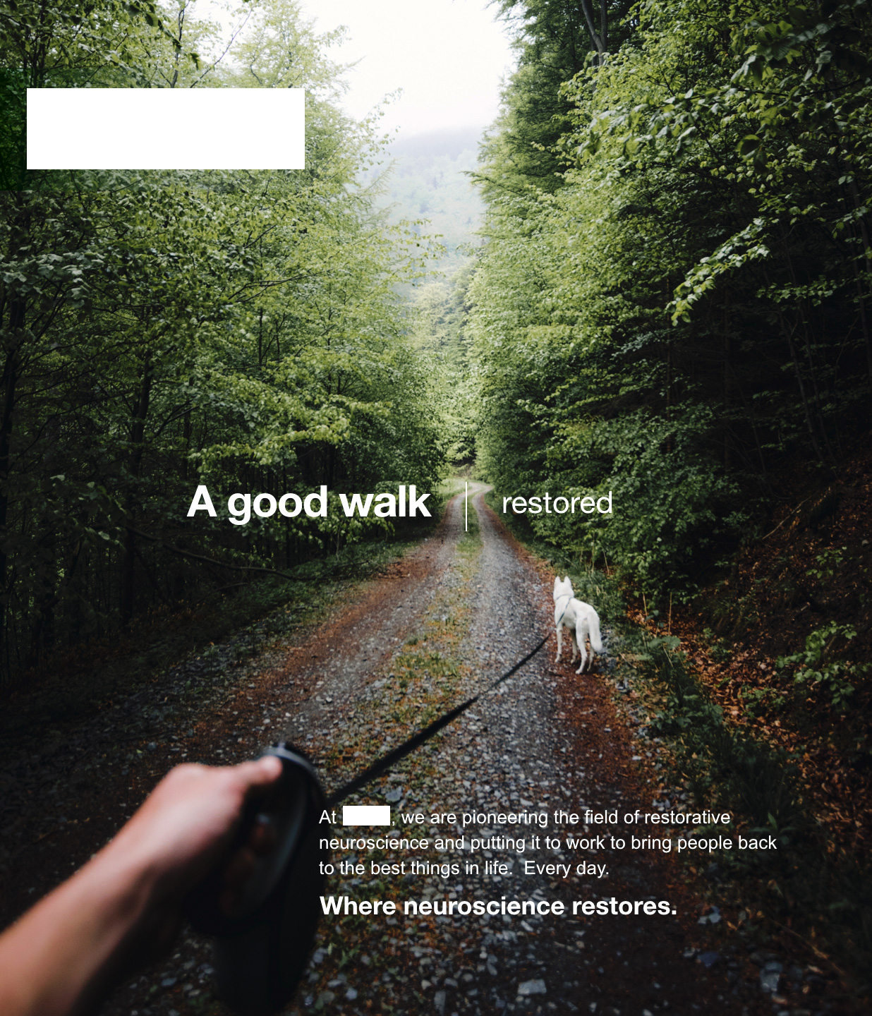 COPY   A good walk | restored  At ▪︎▪︎▪︎ , we are pioneering the field of restorative neuroscience and putting it to work to bring people back to the best things in life. Every day.   TAGLINE   Where neuroscience restores.