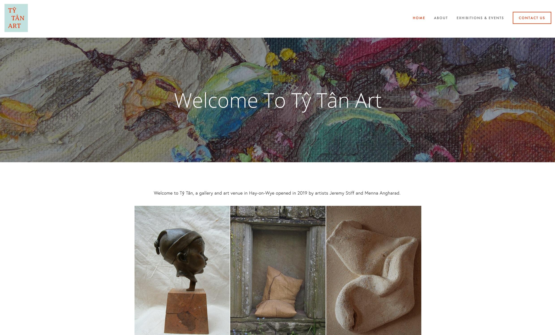 Ty Tan Website Design