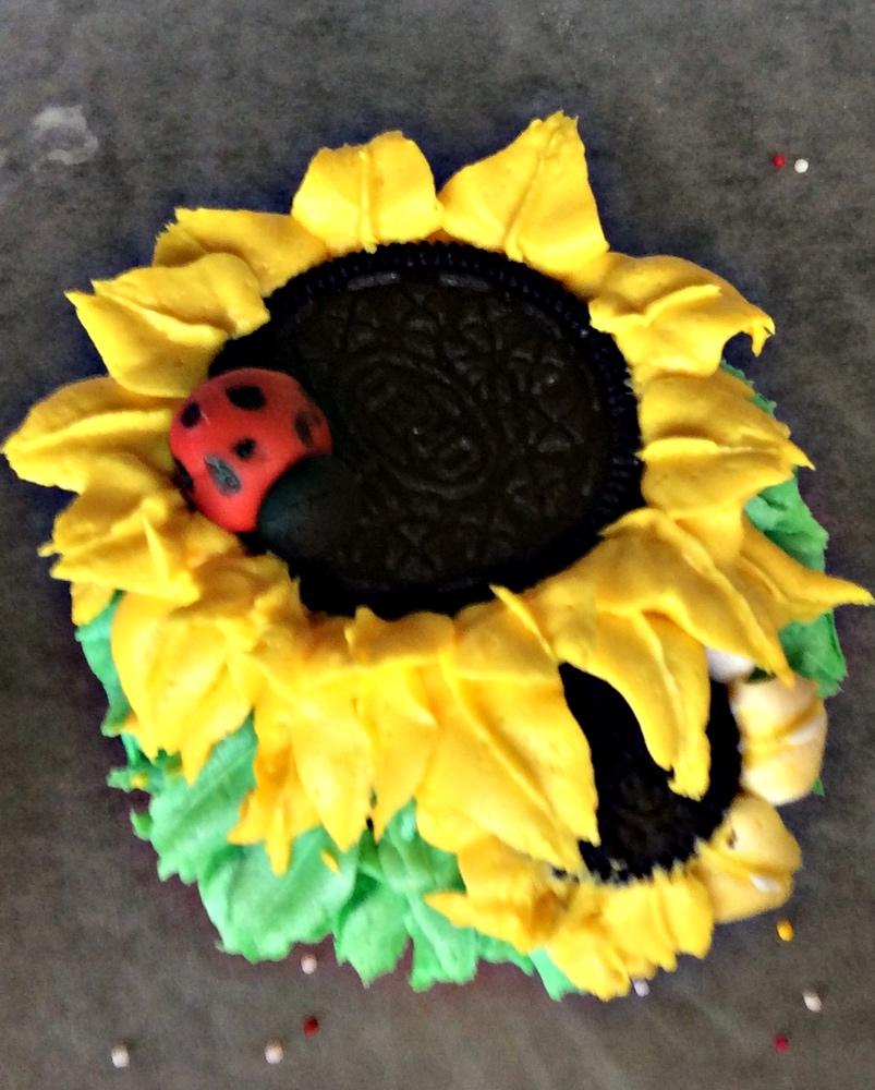 decorating cupcakes at Fun Camp