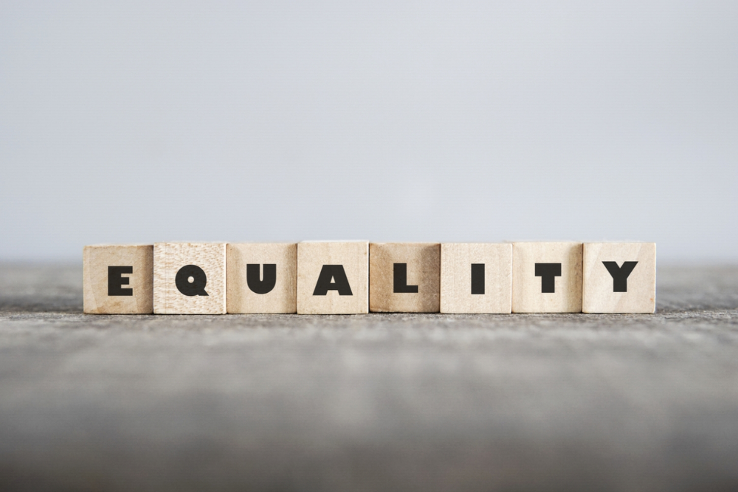 Legal Services, Equality for All, Women's Rights, Gay Rights, LGBTQA+, Rights for Minorities