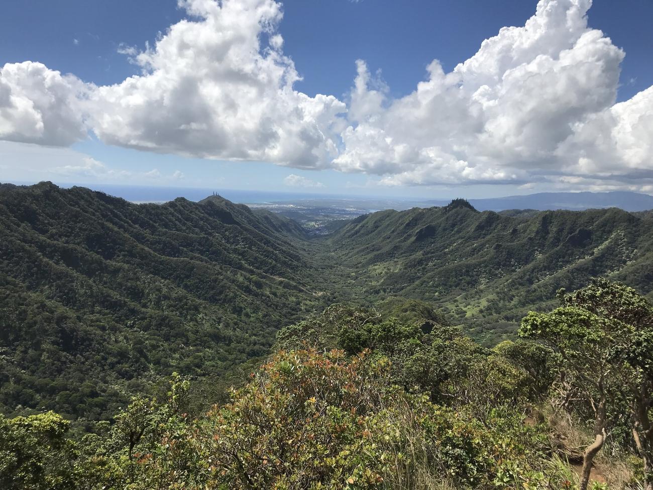 Moanalua-Valley-Trail.JPG