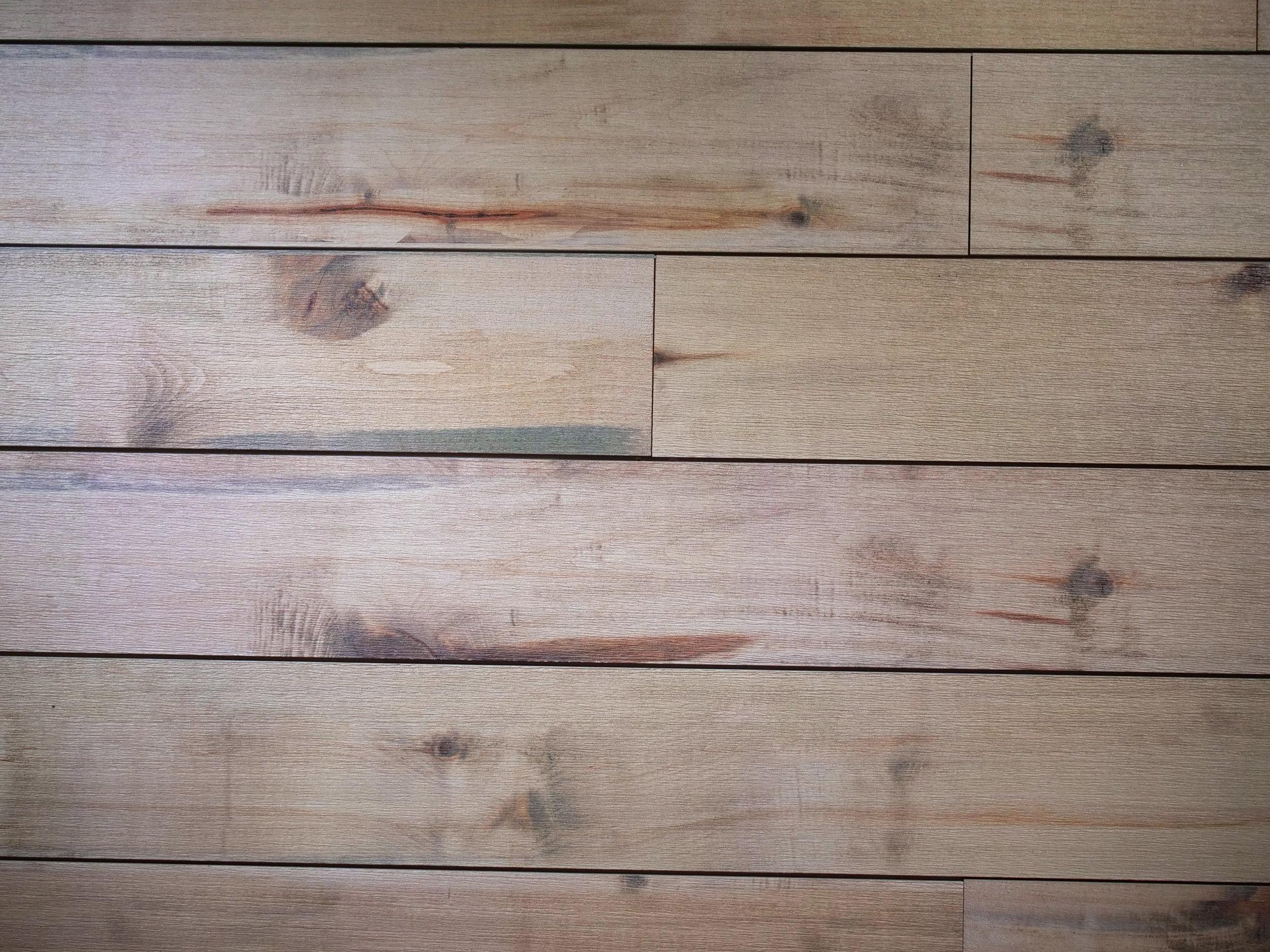driftwood med.jpg