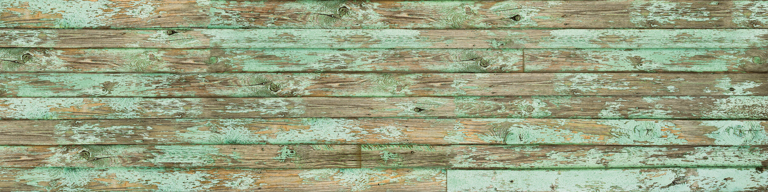 STX Old Paint Green 9 16 19-website.jpg